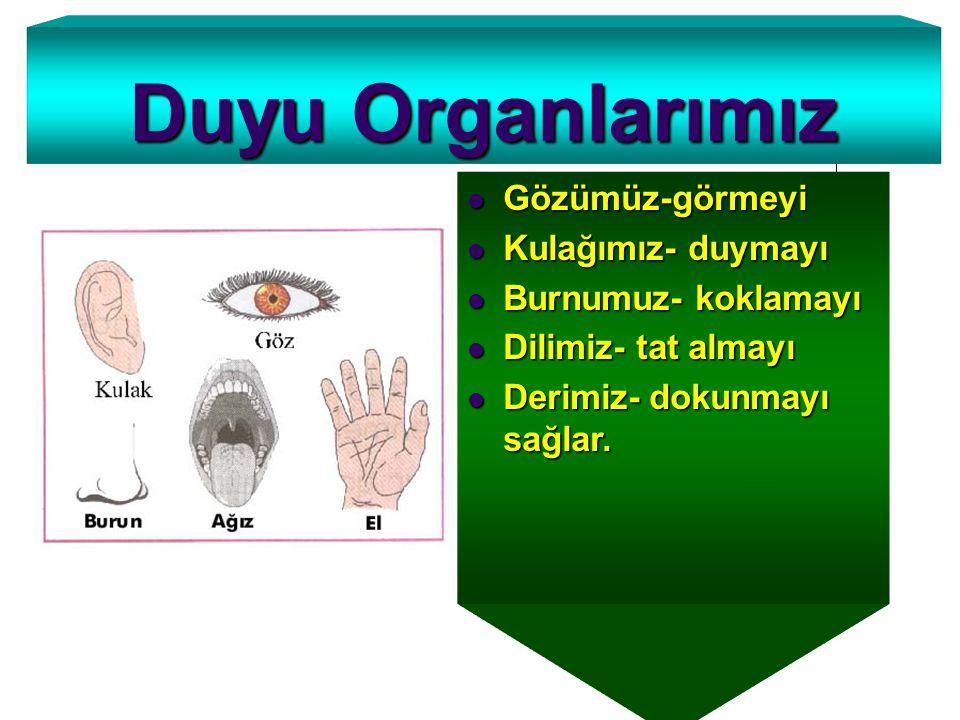 Duyu Organlarımız Gözümüz-görmeyi Kulağımız- duymayı