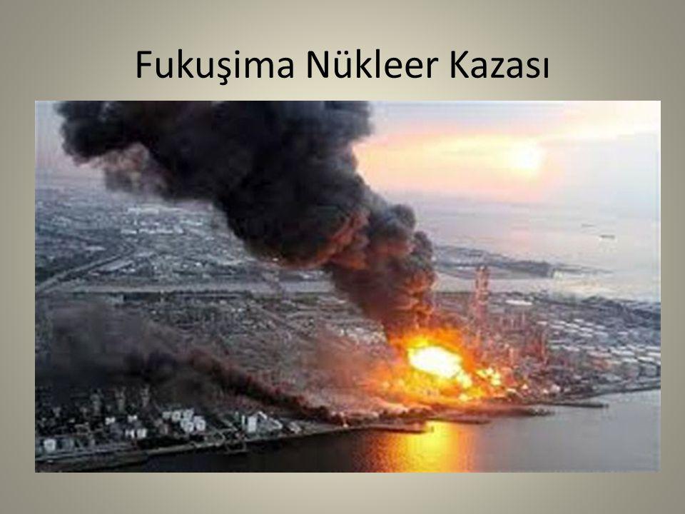 Fukuşima Nükleer Kazası