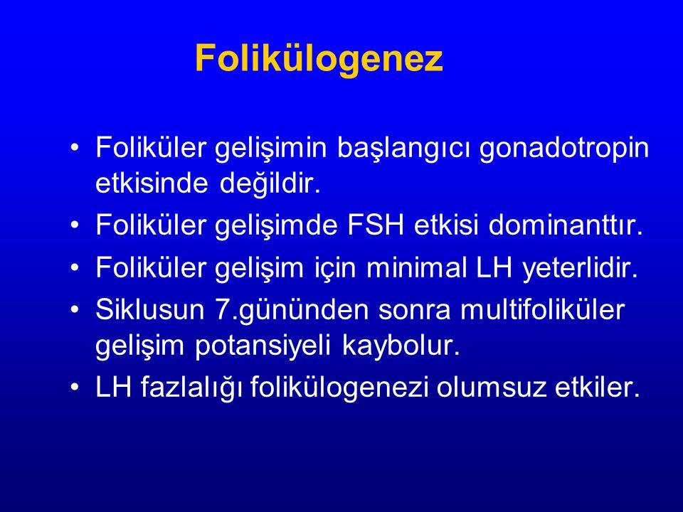 Folikülogenez Foliküler gelişimin başlangıcı gonadotropin etkisinde değildir. Foliküler gelişimde FSH etkisi dominanttır.