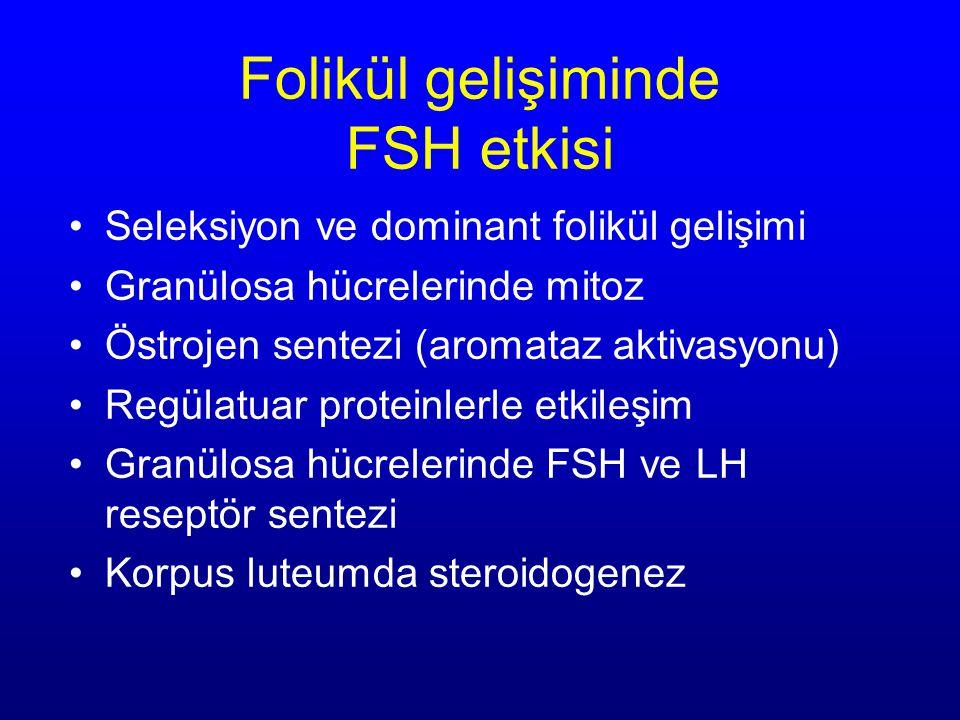 Folikül gelişiminde FSH etkisi