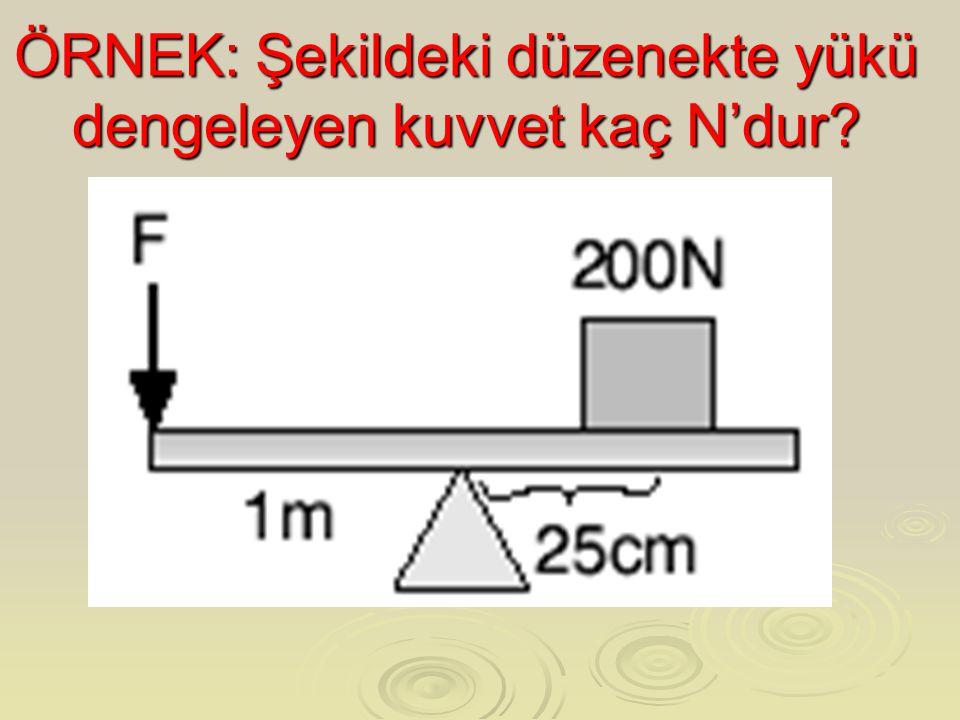 ÖRNEK: Şekildeki düzenekte yükü dengeleyen kuvvet kaç N'dur
