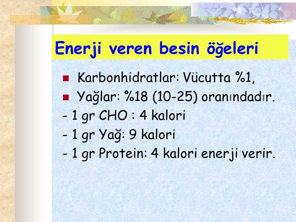 Enerji veren besin öğeleri