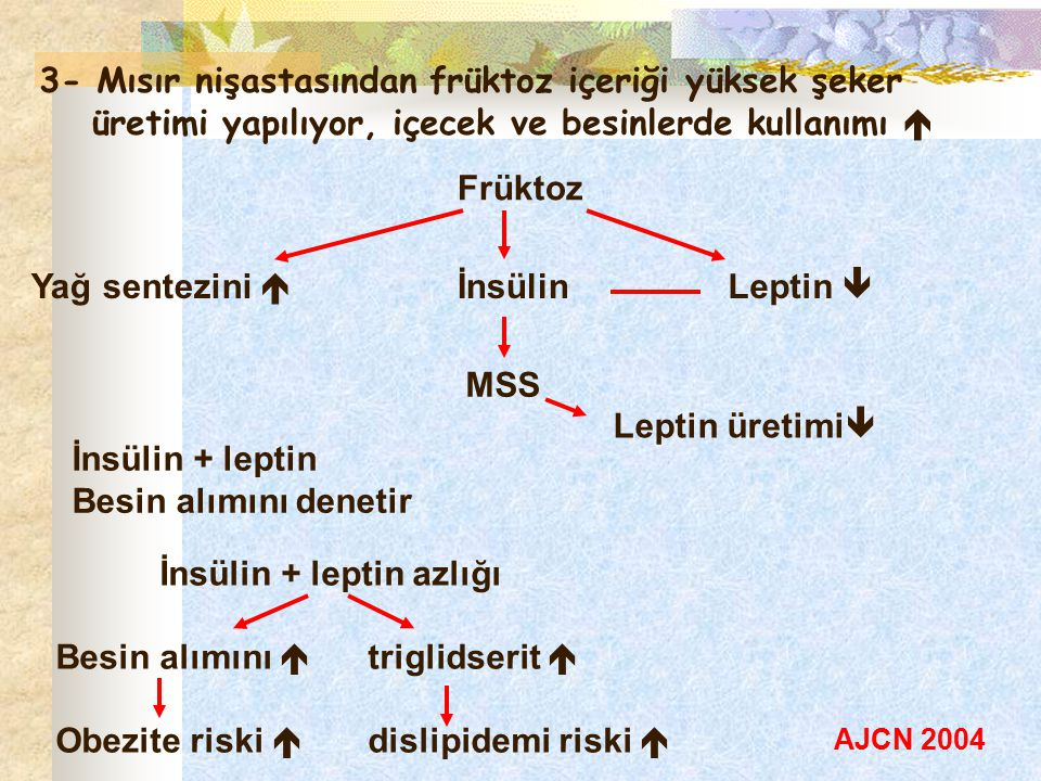 İnsülin + leptin azlığı Besin alımını  triglidserit 