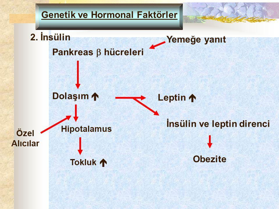Genetik ve Hormonal Faktörler