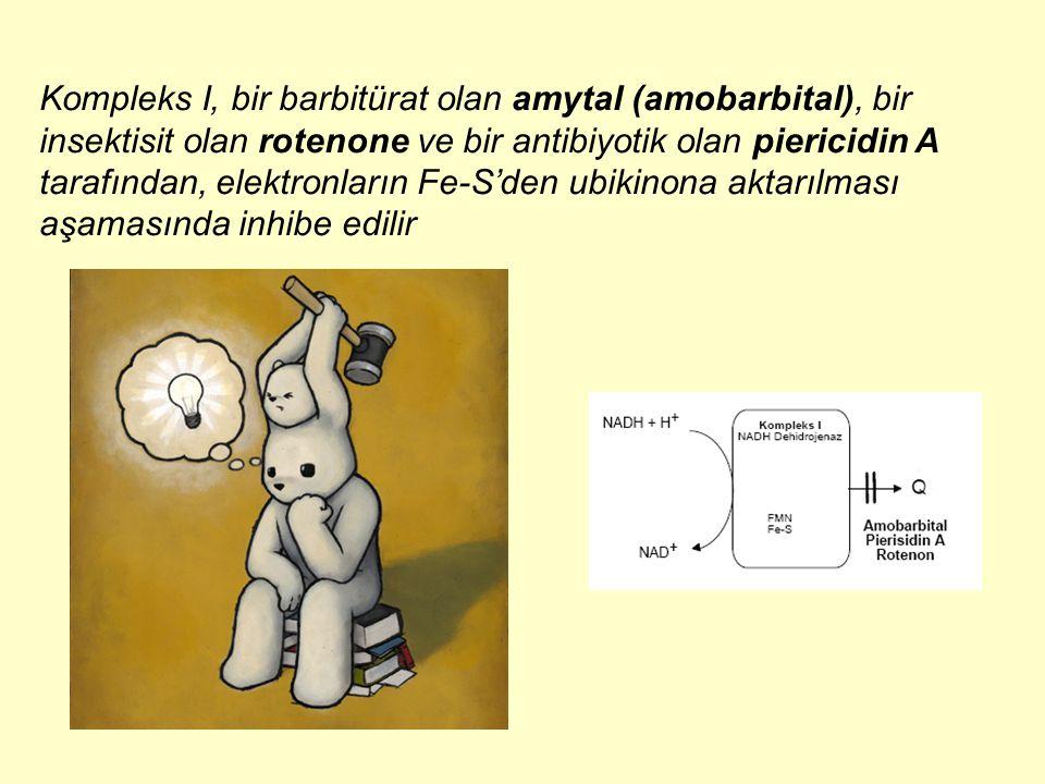 Kompleks I, bir barbitürat olan amytal (amobarbital), bir insektisit olan rotenone ve bir antibiyotik olan piericidin A tarafından, elektronların Fe-S'den ubikinona aktarılması aşamasında inhibe edilir