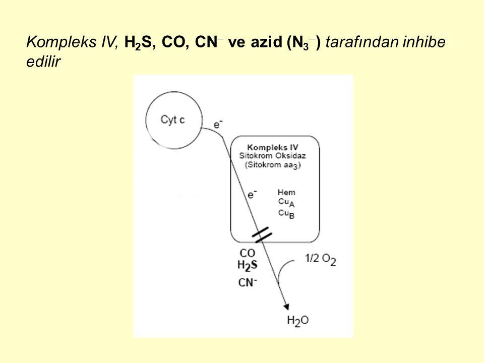 Kompleks IV, H2S, CO, CN ve azid (N3) tarafından inhibe edilir