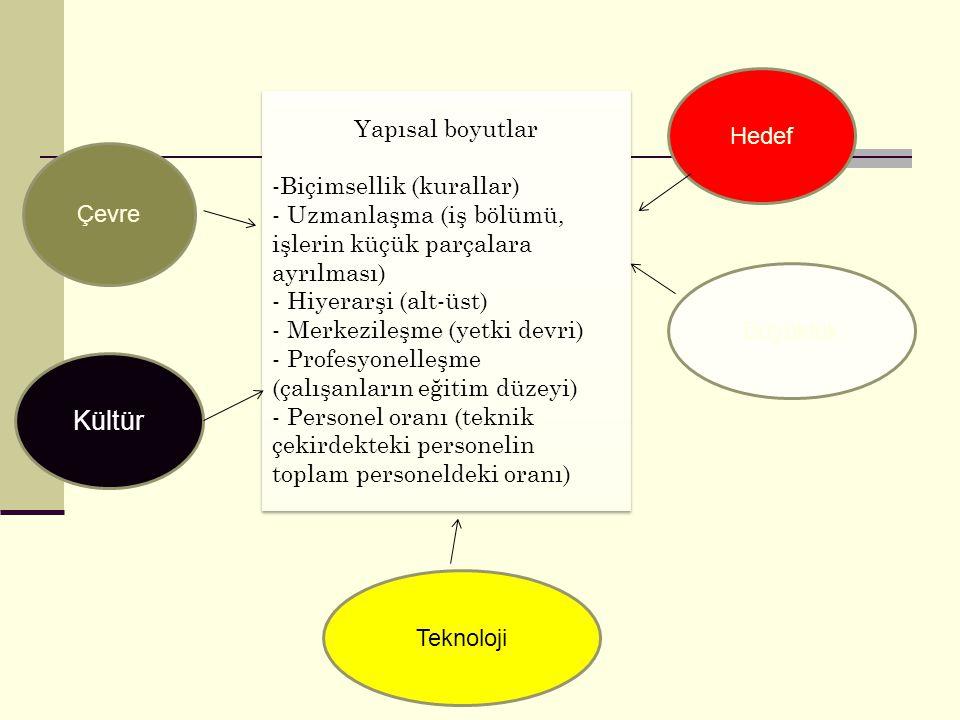 Kültür Hedef Yapısal boyutlar Biçimsellik (kurallar)