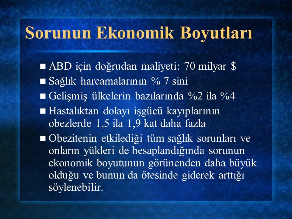 Sorunun Ekonomik Boyutları