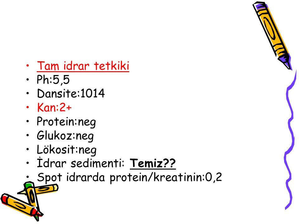 Tam idrar tetkiki Ph:5,5. Dansite:1014. Kan:2+ Protein:neg. Glukoz:neg. Lökosit:neg. İdrar sedimenti: Temiz