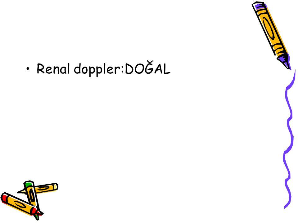 Renal doppler:DOĞAL