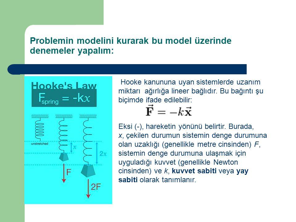 Problemin modelini kurarak bu model üzerinde denemeler yapalım: