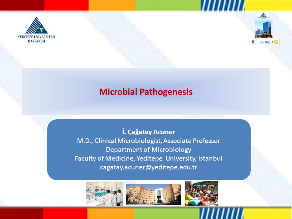 Microbial Pathogenesis
