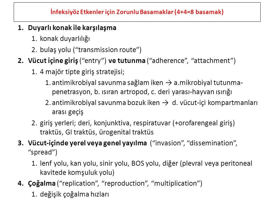 İnfeksiyöz Etkenler için Zorunlu Basamaklar (4+4=8 basamak)