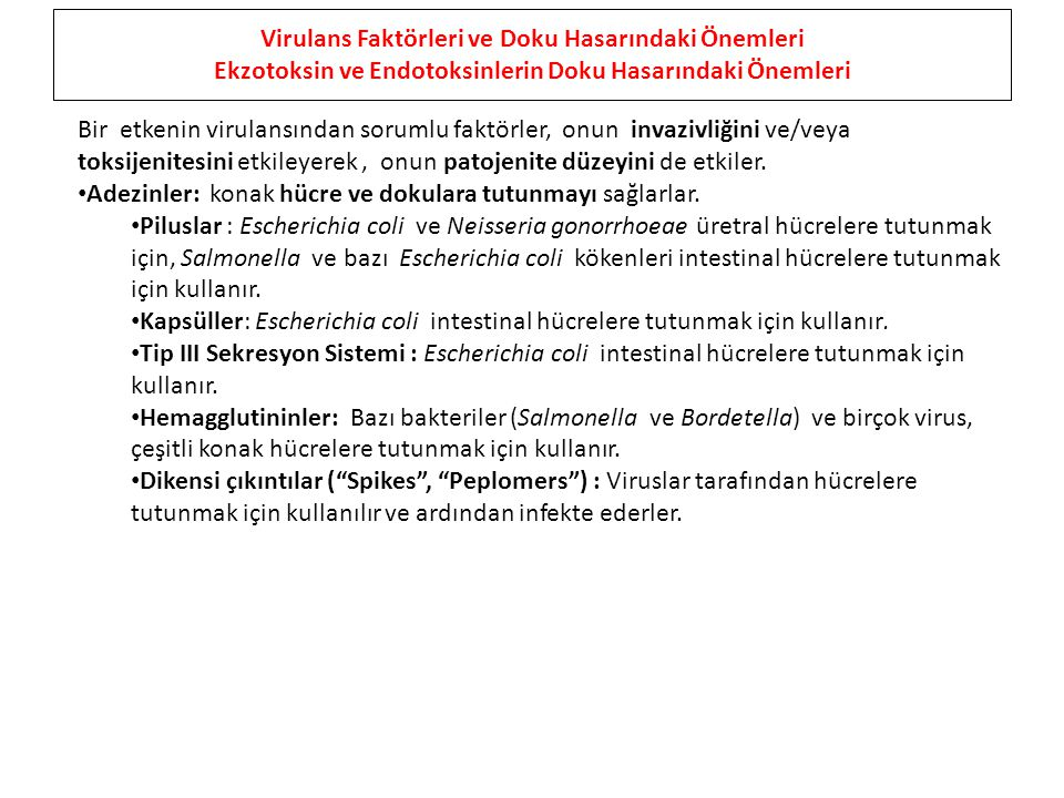 Virulans Faktörleri ve Doku Hasarındaki Önemleri