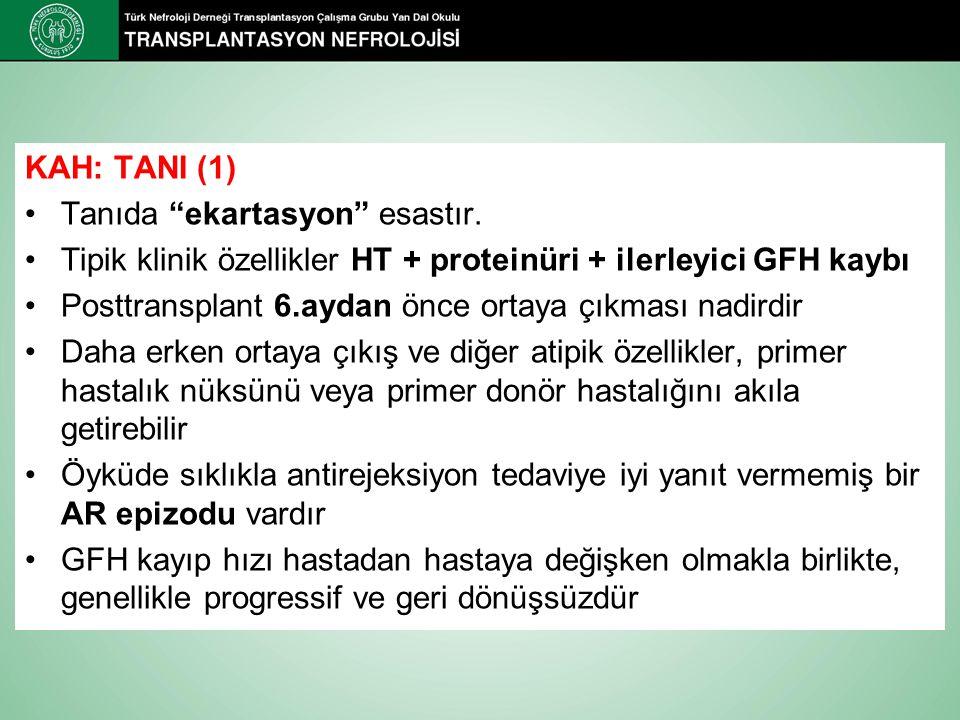 KAH: TANI (1) Tanıda ekartasyon esastır. Tipik klinik özellikler HT + proteinüri + ilerleyici GFH kaybı.