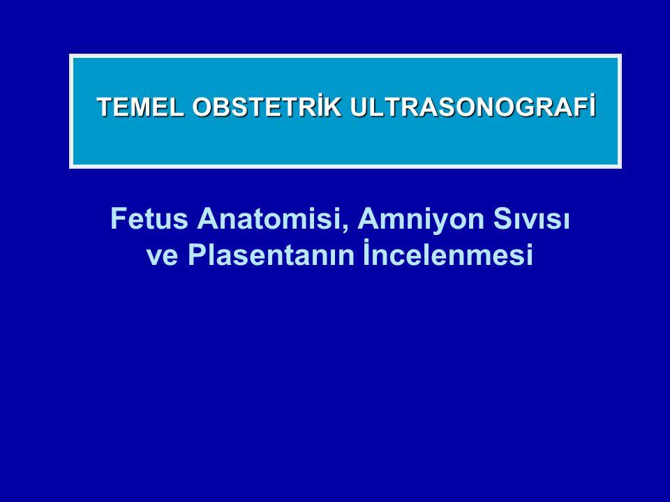Fetus Anatomisi, Amniyon Sıvısı ve Plasentanın İncelenmesi