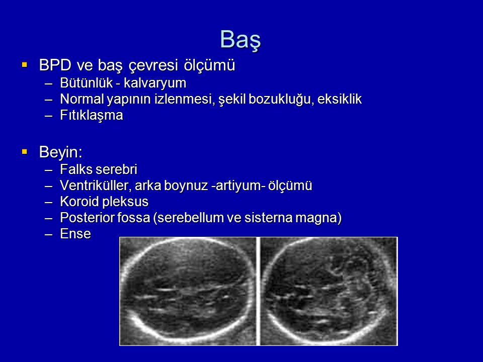 Baş BPD ve baş çevresi ölçümü Beyin: Bütünlük - kalvaryum