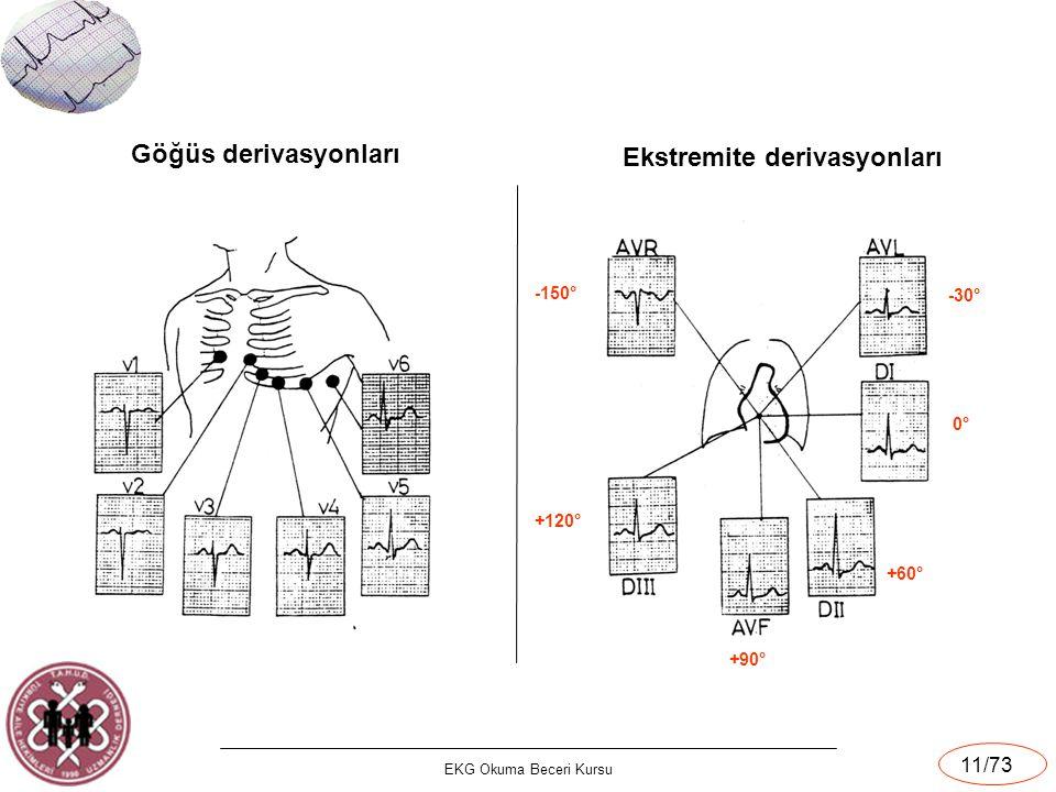 Ekstremite derivasyonları