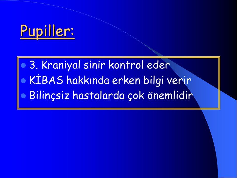 Pupiller: 3. Kraniyal sinir kontrol eder