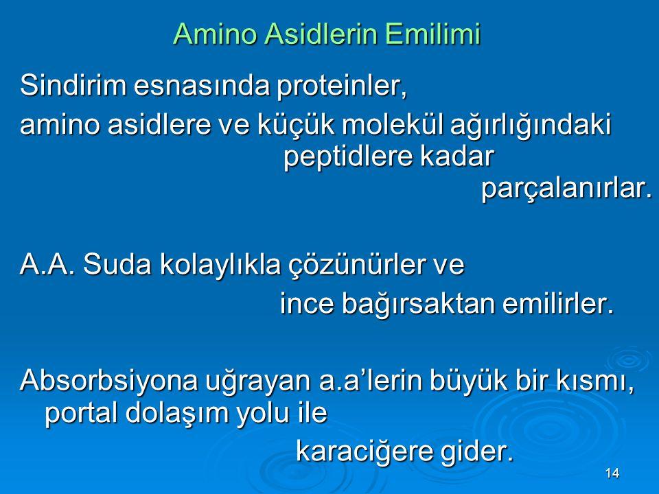 Amino Asidlerin Emilimi