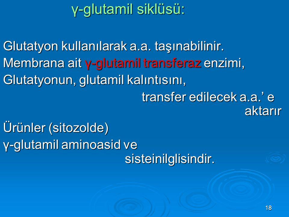 γ-glutamil siklüsü: Glutatyon kullanılarak a.a. taşınabilinir.