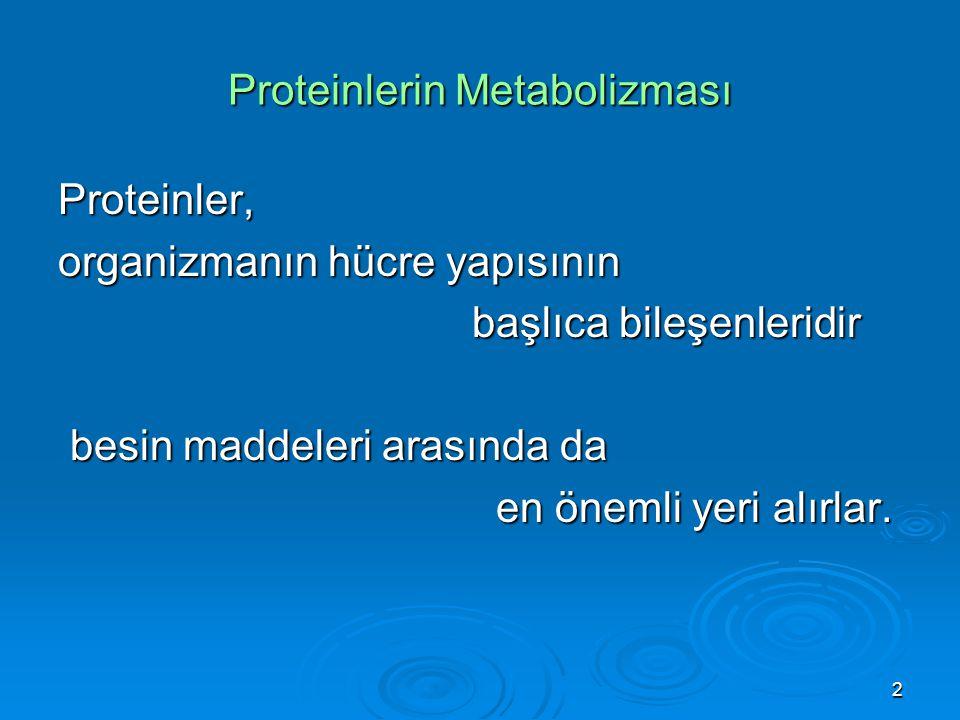Proteinlerin Metabolizması