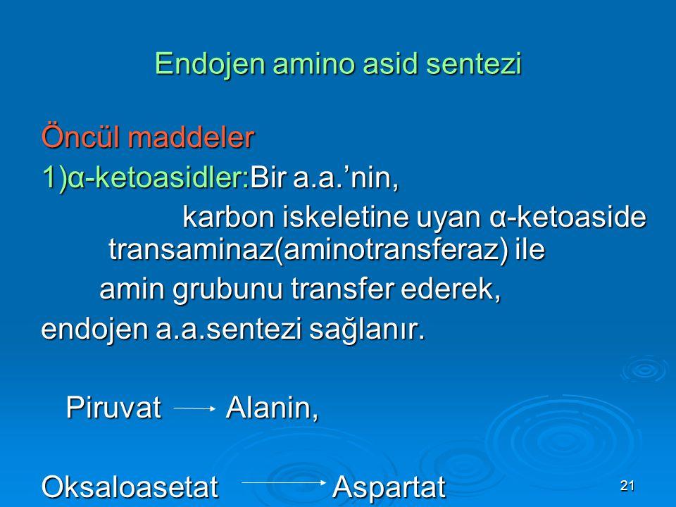 Endojen amino asid sentezi