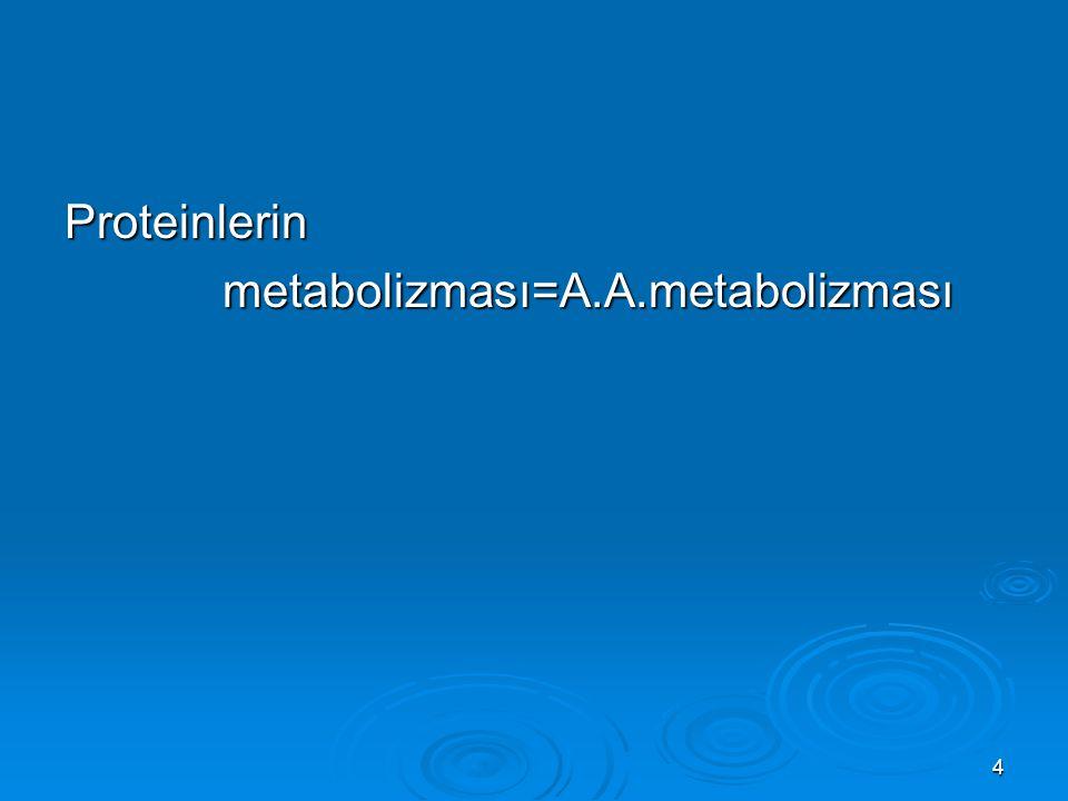 Proteinlerin metabolizması=A.A.metabolizması