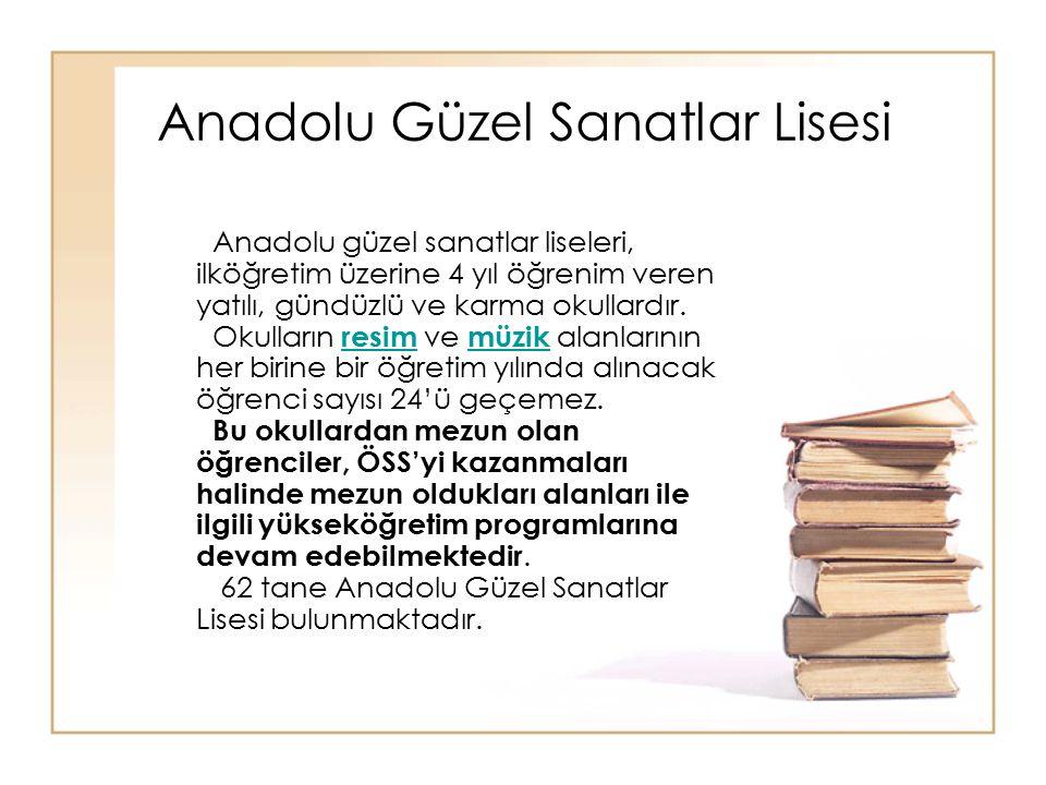 Anadolu Güzel Sanatlar Lisesi