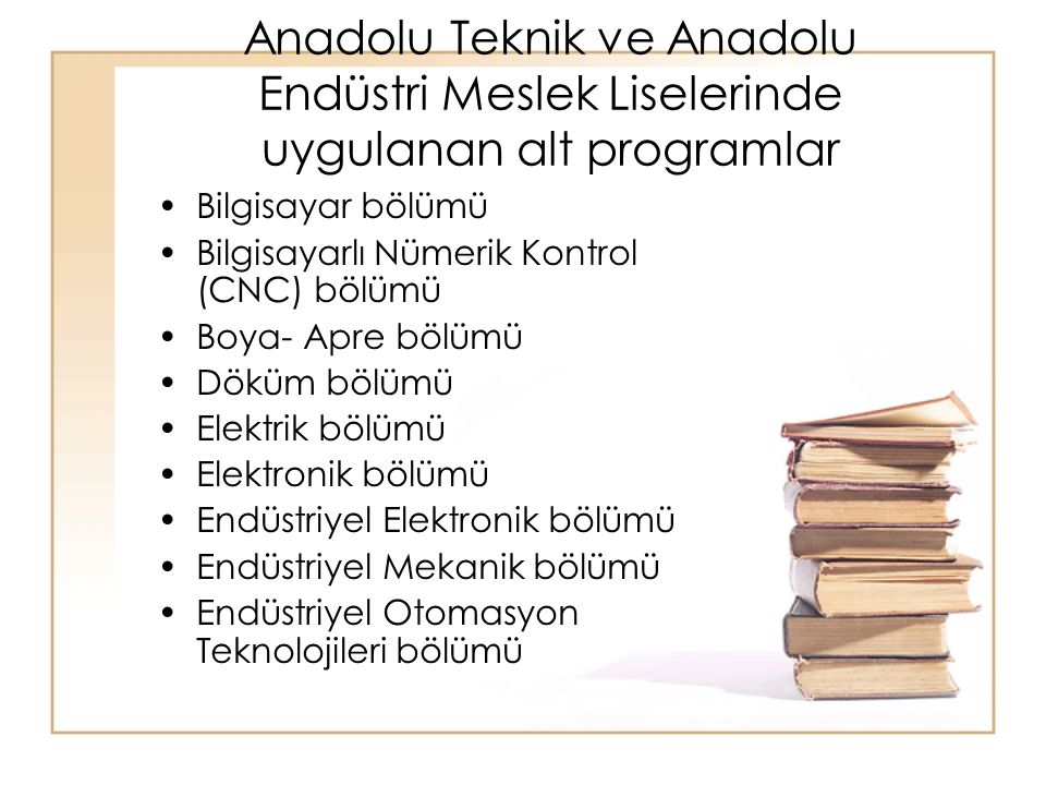 Anadolu Teknik ve Anadolu Endüstri Meslek Liselerinde uygulanan alt programlar