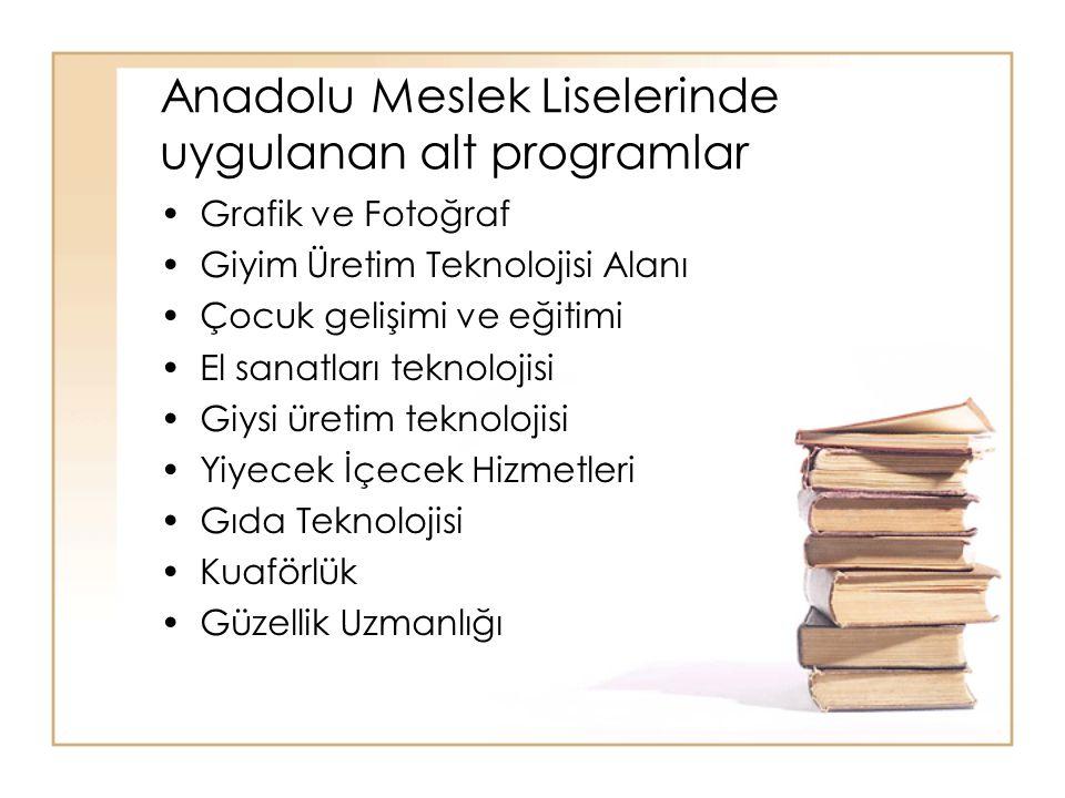 Anadolu Meslek Liselerinde uygulanan alt programlar