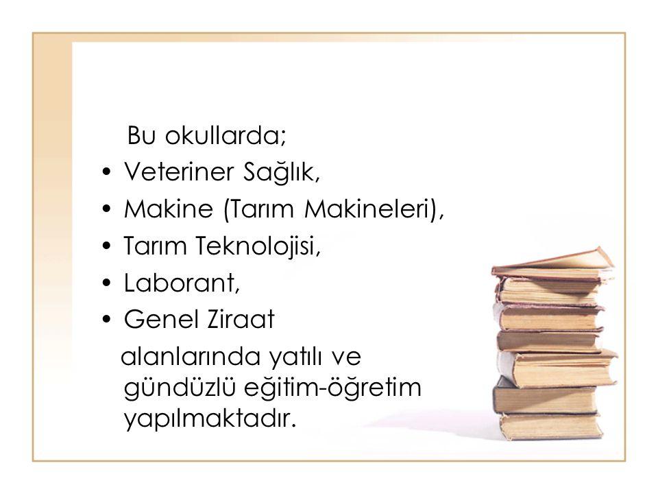Bu okullarda; Veteriner Sağlık, Makine (Tarım Makineleri), Tarım Teknolojisi, Laborant, Genel Ziraat.