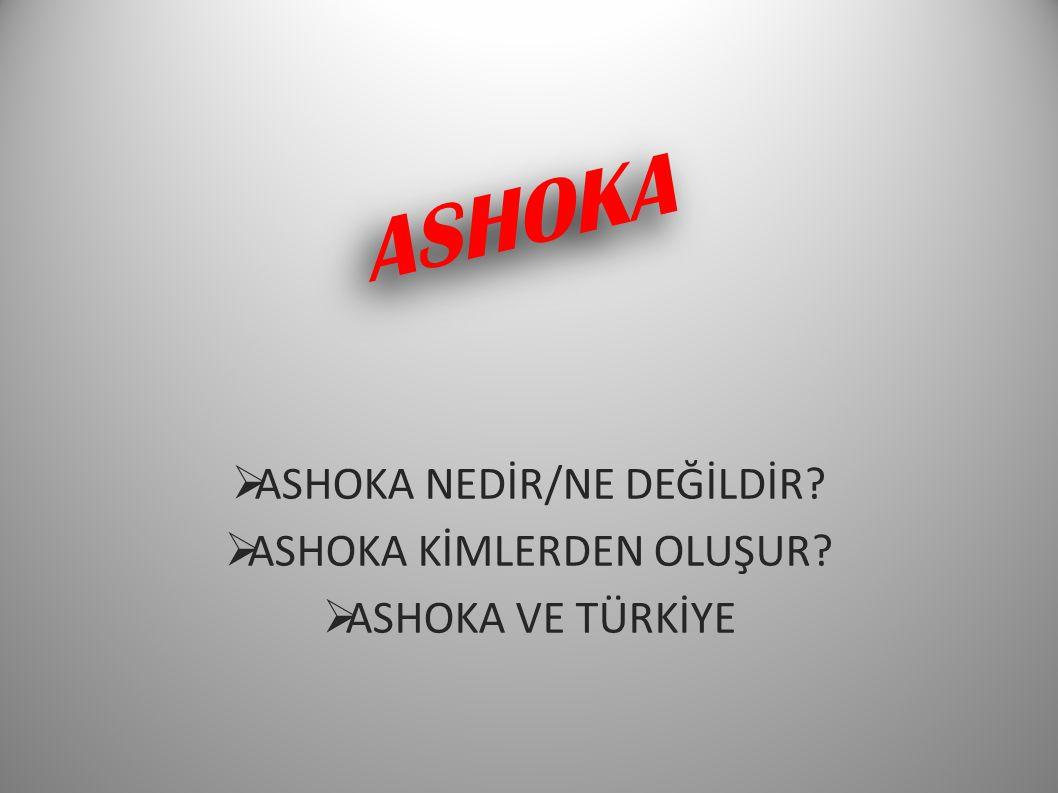 ASHOKA NEDİR/NE DEĞİLDİR ASHOKA KİMLERDEN OLUŞUR ASHOKA VE TÜRKİYE