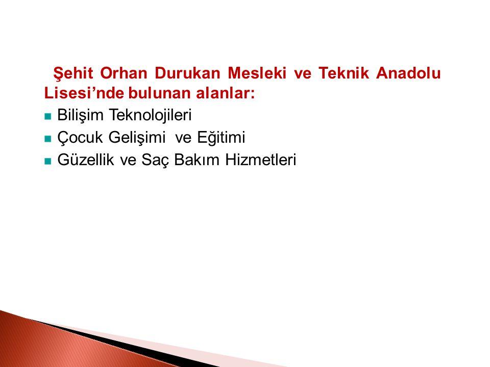 Şehit Orhan Durukan Mesleki ve Teknik Anadolu Lisesi'nde bulunan alanlar: