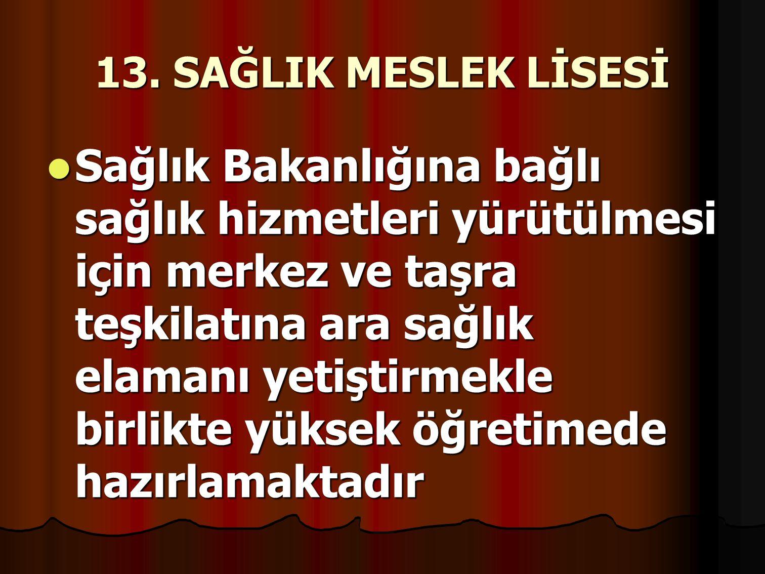 13. SAĞLIK MESLEK LİSESİ