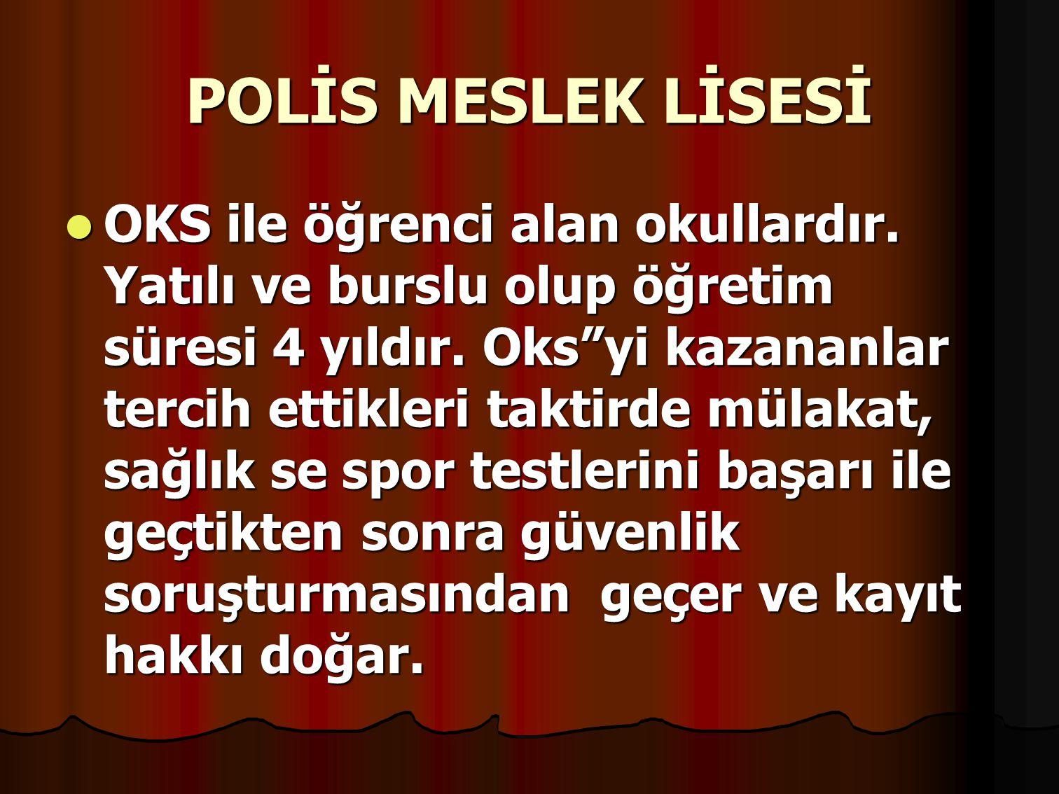 POLİS MESLEK LİSESİ