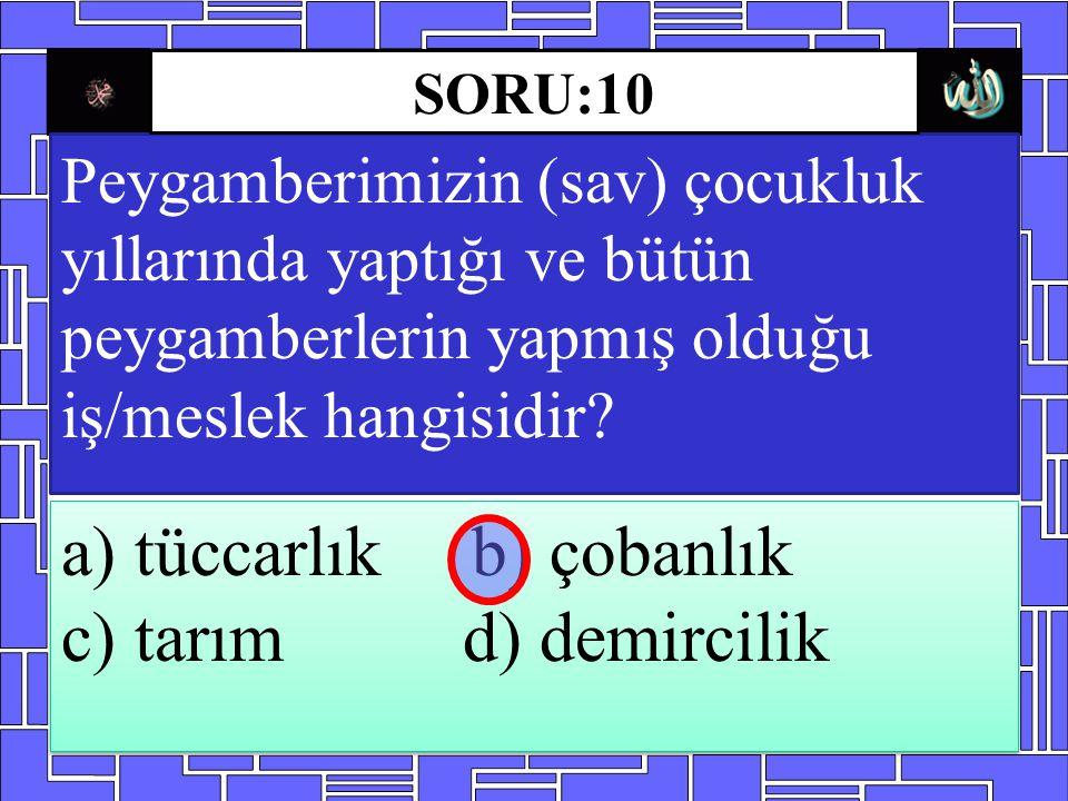 a) tüccarlık b) çobanlık c) tarım d) demircilik