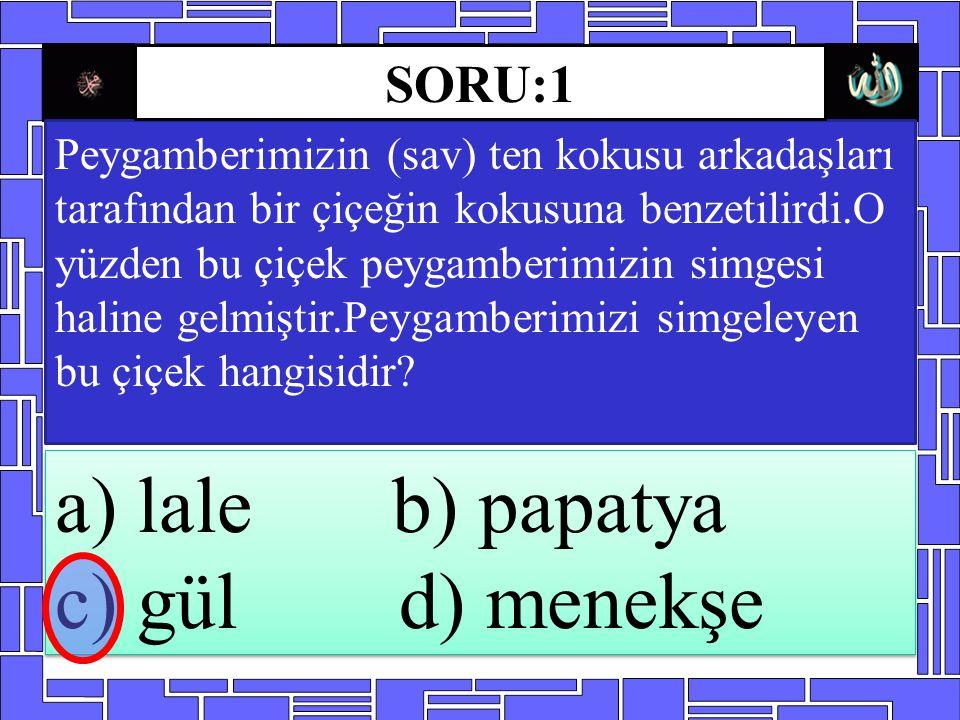 a) lale b) papatya c) gül d) menekşe SORU:1