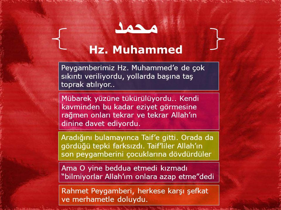 محمد Hz. Muhammed. Peygamberimiz Hz. Muhammed'e de çok sıkıntı veriliyordu, yollarda başına taş toprak atılıyor..