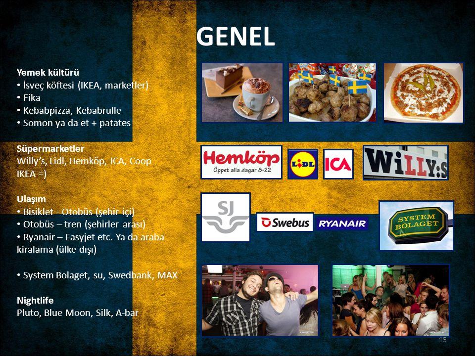 GENEL Yemek kültürü İsveç köftesi (IKEA, marketler) Fika
