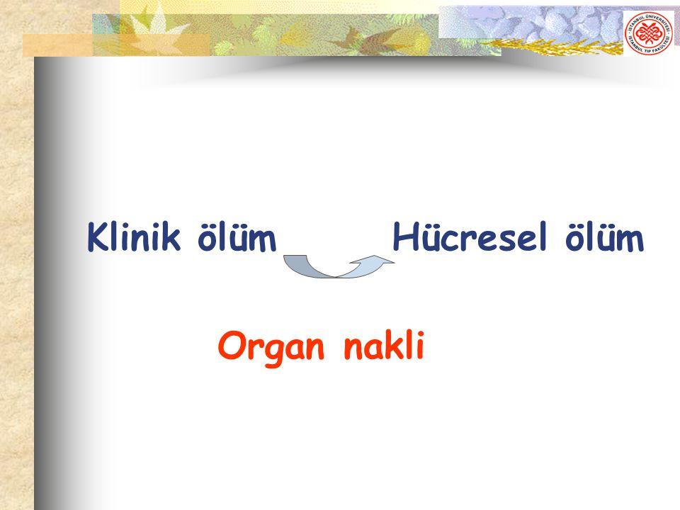 Klinik ölüm Hücresel ölüm Organ nakli