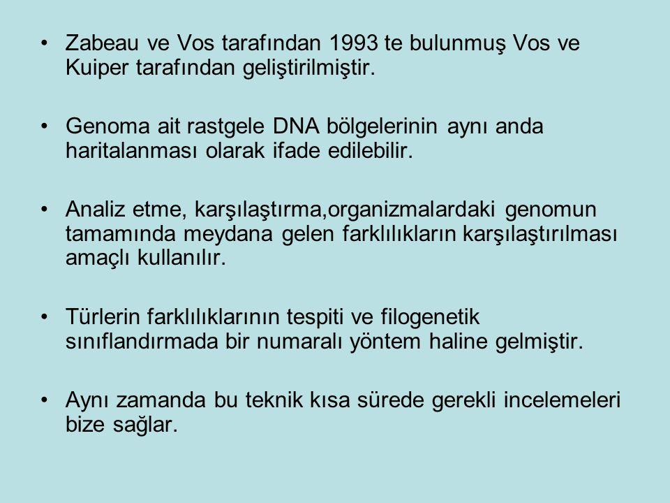 Zabeau ve Vos tarafından 1993 te bulunmuş Vos ve Kuiper tarafından geliştirilmiştir.