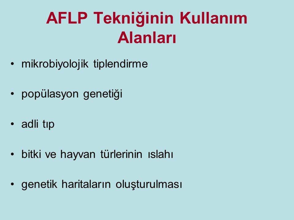 AFLP Tekniğinin Kullanım Alanları