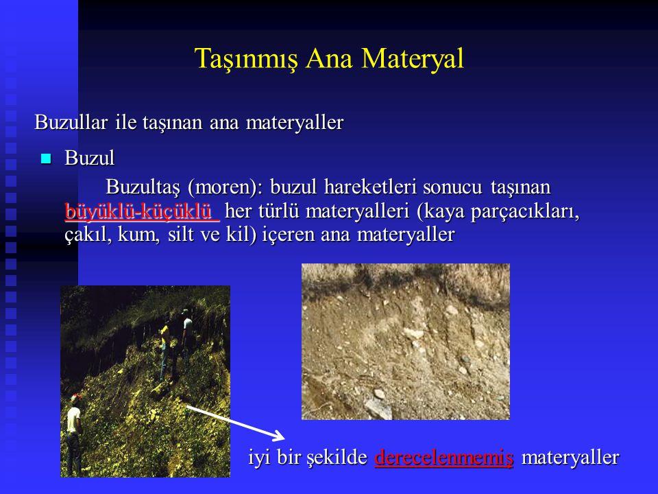 Taşınmış Ana Materyal Buzullar ile taşınan ana materyaller Buzul