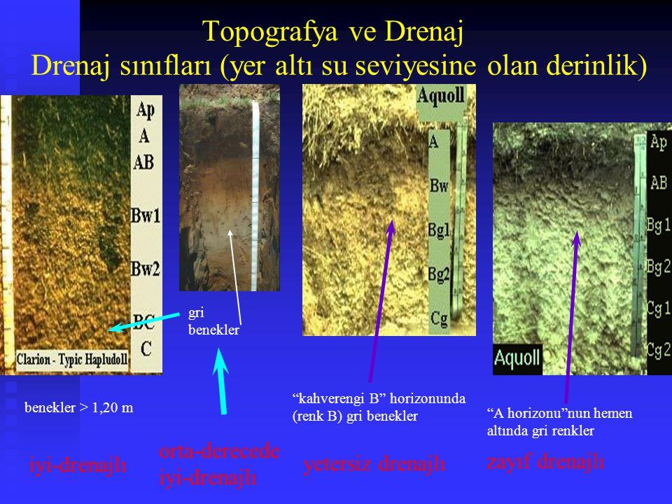 Drenaj sınıfları (yer altı su seviyesine olan derinlik)