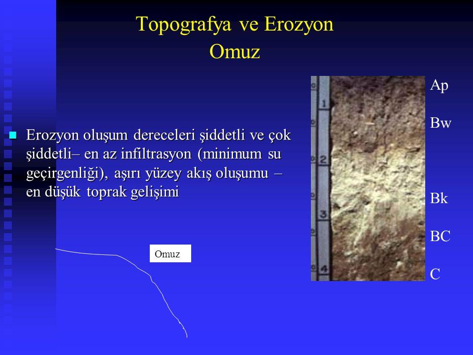 Topografya ve Erozyon Omuz Ap Bw