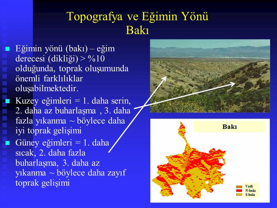 Topografya ve Eğimin Yönü