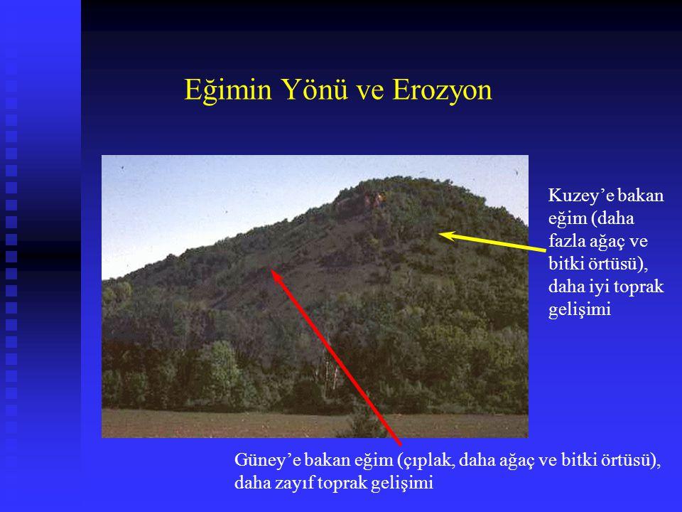 Eğimin Yönü ve Erozyon Kuzey'e bakan eğim (daha fazla ağaç ve bitki örtüsü), daha iyi toprak gelişimi.