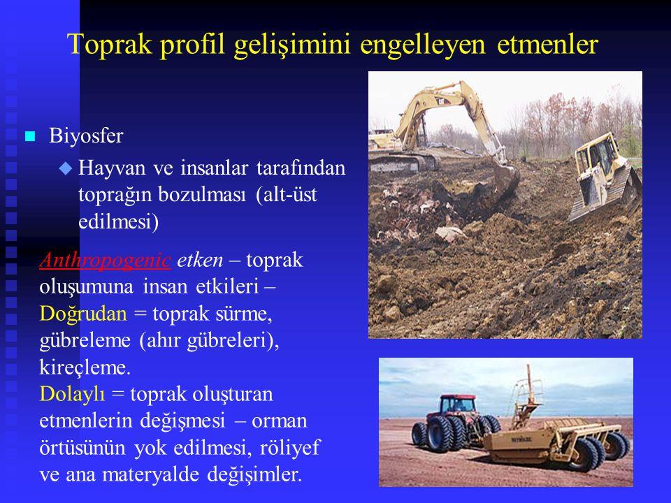 Toprak profil gelişimini engelleyen etmenler