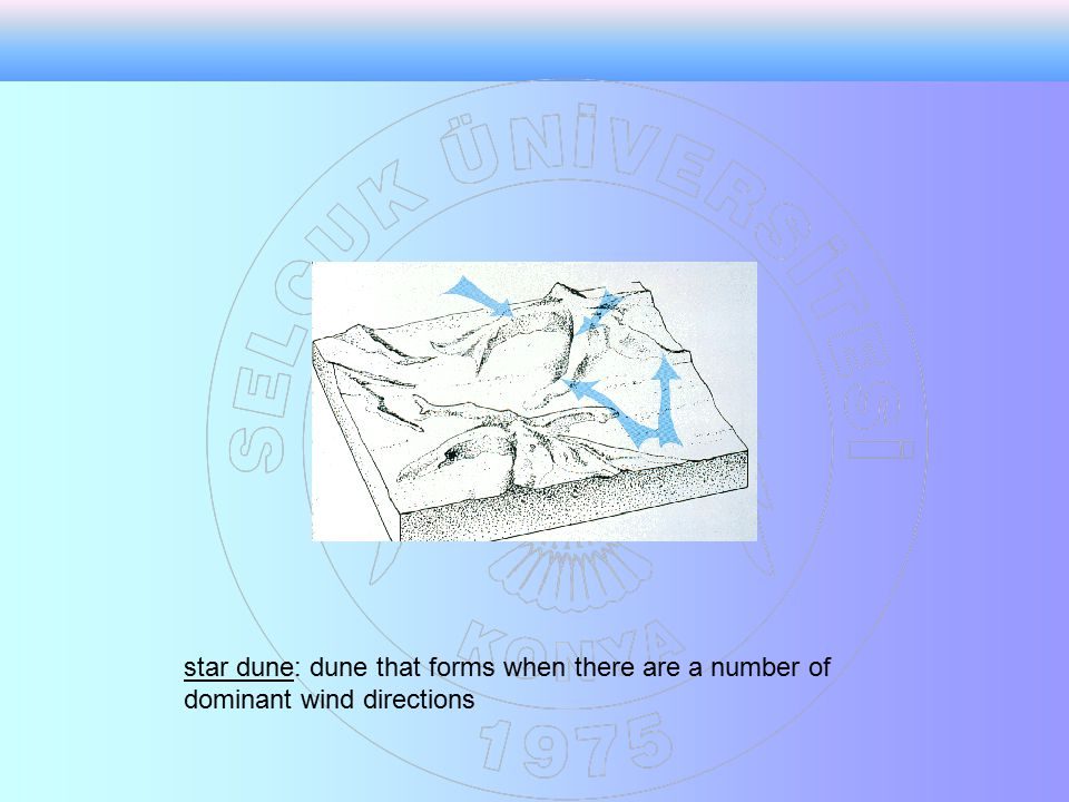 star dune: dune that forms when there are a number of dominant wind directions